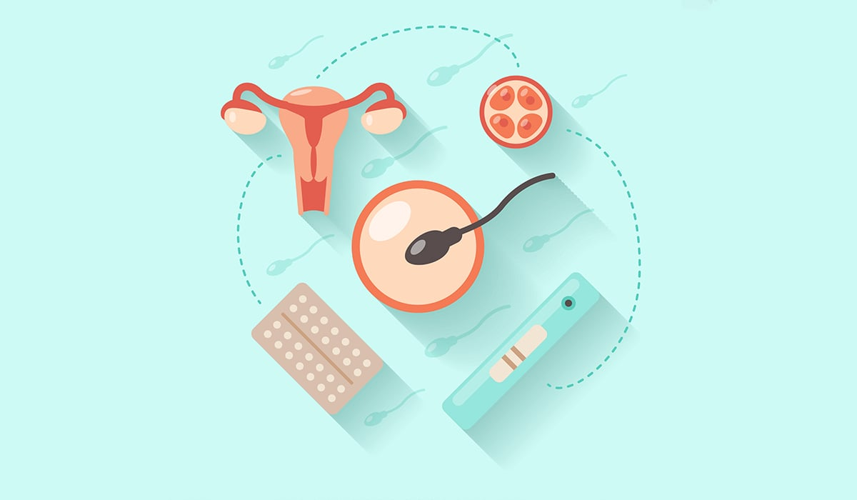 pregnancy and conception
