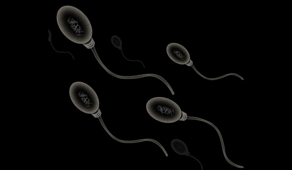 what affects sperm quality image