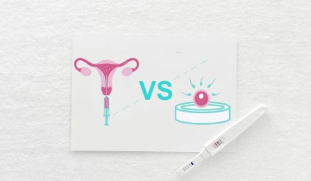 IUI vs IVF main image