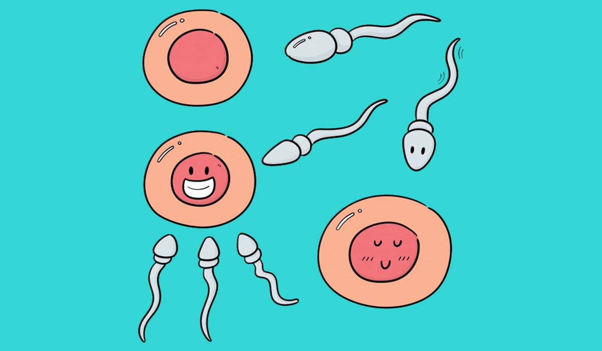 iui vs ivf - sperm quality image